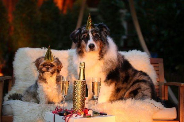 Dekorera hemmet till nyår